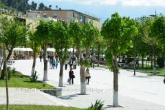 albania2008