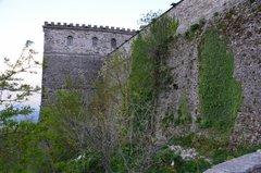 albania5086