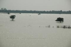 cambodia2004