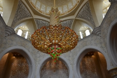 abu-dhabi1035