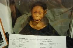 ethiopia0123