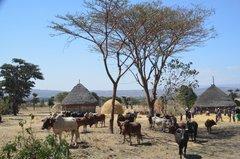 ethiopia0514