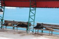galapagos-islands1002