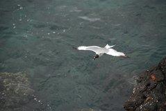 galapagos-islands2025