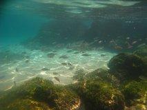 galapagos-islands7753