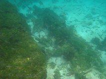 galapagos-islands7759