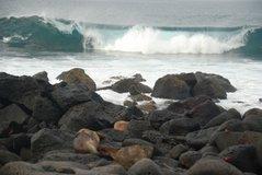 galapagos-islands8003