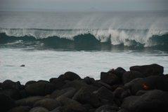 galapagos-islands8006