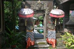 indonesia4248