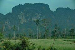 laos5019