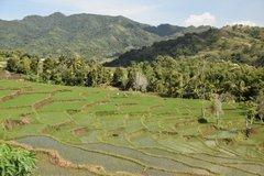 indonesia5093