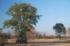malawi2124