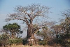 malawi2140