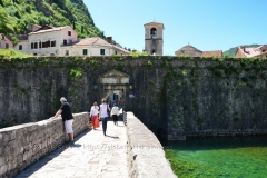 montenegro1007