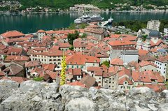 montenegro1075