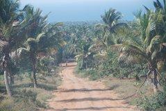 mozambique2004