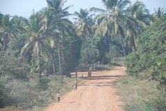 mozambique2005