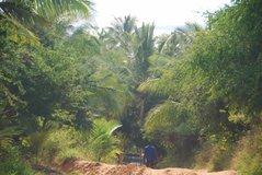 mozambique2007