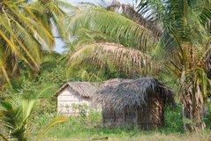 mozambique2010