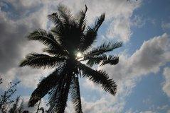 mozambique2012