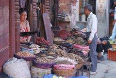 nepal1073