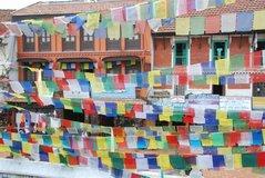 nepal1535