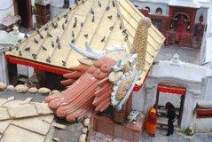 nepal1544