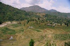 nepal9317