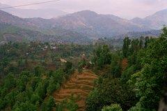 nepal9333