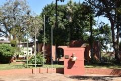 paraguay1007