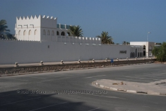 qatar1007