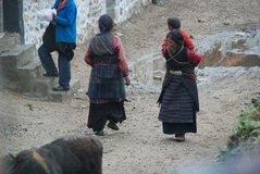 tibet1055