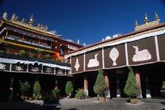tibet5529