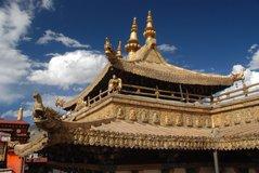 tibet5532