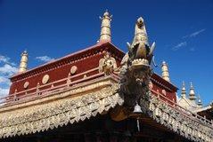 tibet5533