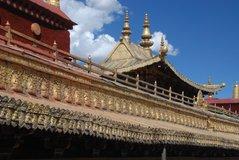 tibet5534
