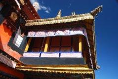 tibet5539