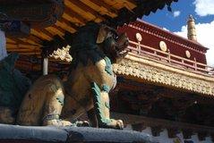 tibet5542
