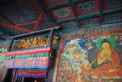 tibet5544