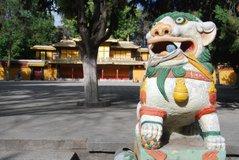 tibet6010