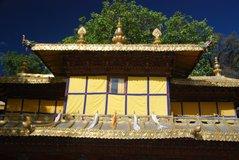 tibet6011