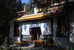 tibet6025