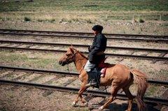 trans-siberia-express1101