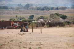 zambia5010