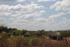 zambia5017