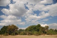 zambia5020