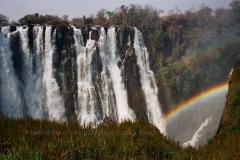 zimbabwe1011